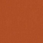 Canvas Rust 54010-0000 Colorway