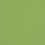 Canvas Ginkgo 54011-0000 Colorway