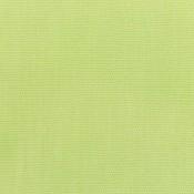 Canvas Parrot 5405-0000 Colorway