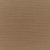 Canvas Camel 5468-0000 Colorway