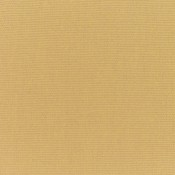 Canvas Brass 5484-0000 Colorway