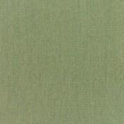 Canvas Fern 5487-0000 Colorway