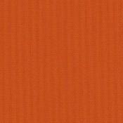 Canvas Pumpkin SJA 3969 137 Colorway
