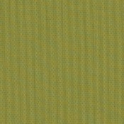 Canvas Lichen SJA 3970 137 Colorway
