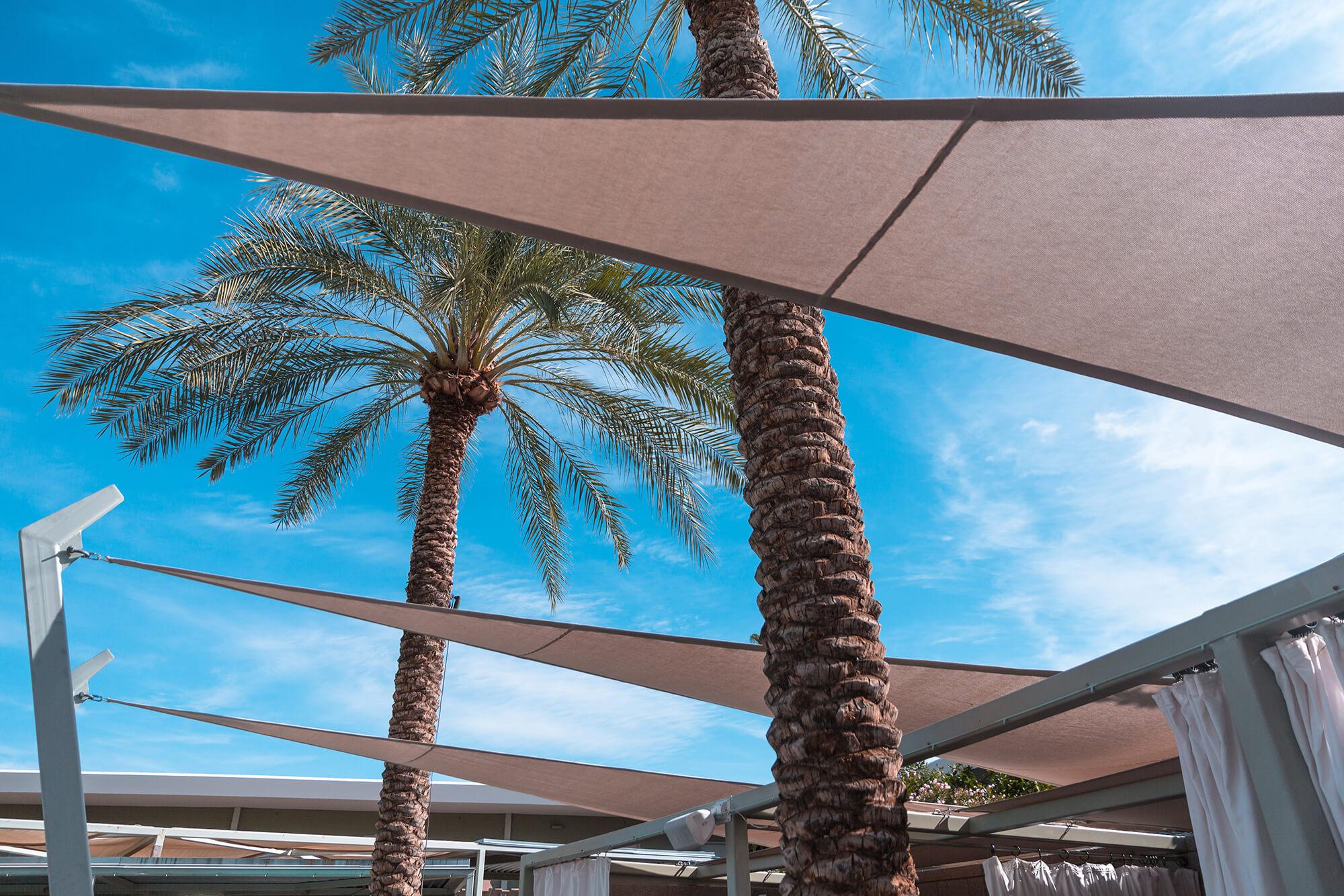 褐色 Sunbrella 仿形织物遮阳篷和背景棕榈树